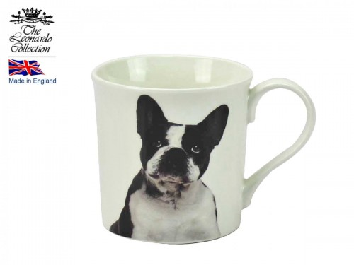 Kubek - pies French Bulldog
